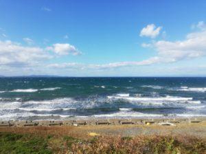 車窓から見える青々とした陸奥湾!「大湊線」での鉄道旅のススメ